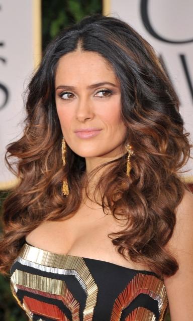 Колорирование темных волос 2012 (6)