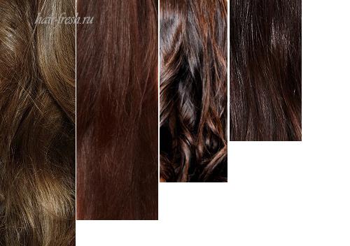 Каштановые оттенки волос