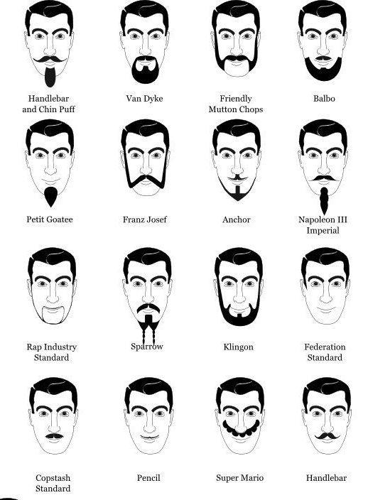 Виды бород: по типу лица